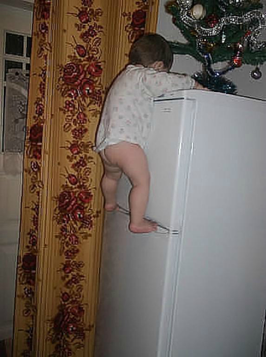 ялинка на холодильнику