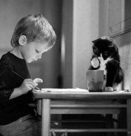 Діти та коти