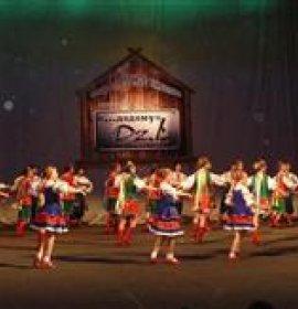 Джерельця Карпат, зразковий дитячий ансамбль народного танцю