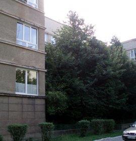 Ужгородська міська дитяча клінічна лікарня