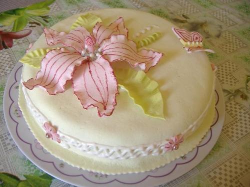 Вчимося пекти оригінальні торти (допомагають Уляна та Міла) .